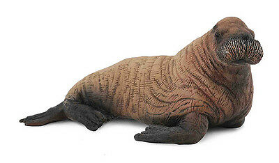 FREE SHIPPING | CollectA 88570 Walrus Calf Toy Sealife Replica - New in Package