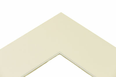 """16x20"""" Picture/ Photo Bevel Edge Mounts in White - Various Aperture Sizes"""
