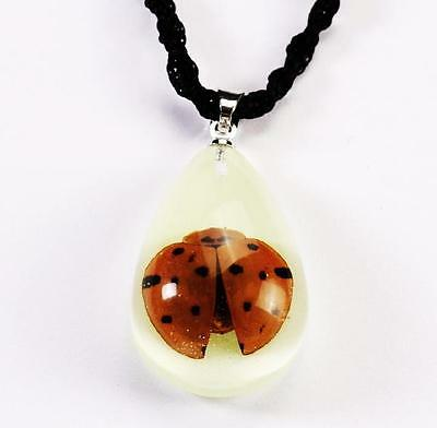 New Real Ladybug Glow Lucite Necklace Pendant Insect Jewelry Taxidermy Gift Ng