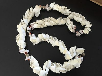 Vintage Natural Stacked Clam Shell Hawaiian Lei Necklace WhitE Snail Accents