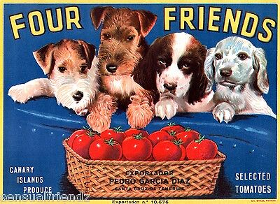 Four Friends Puppy Dogs Tomato Fruit Crate Label Art Print Canary Islands