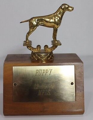 Antique Puppy Dog Show Trophy Brass Wood base 1958 50s St Paul MN RARE pointer