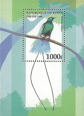Benin Stamp, 1996 BEN9606 Bird, Tree, Nature, Animal, Wildlife