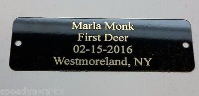 """Brass Plate Picture Frame Art Taxidermy Label Name Tag Engraved Free 1"""" x 3.25"""""""