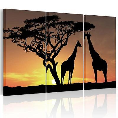 Unframed Large Tree Giraffe HD Canvas Print Wall Art Picture Split Animal Poster