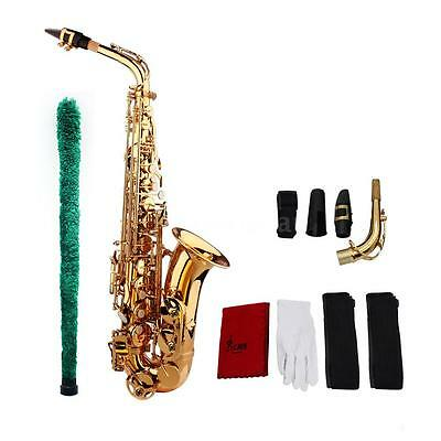 Professional Brass Golden Eb Alto Sax Saxophone with Case + Care Kit Gold 0K1R