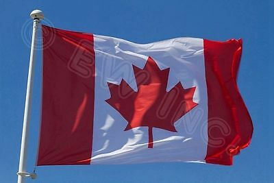 New 3x5FT Polyester CANADA FLAG Canadian Country Maple Leaf Outdoor Grommets