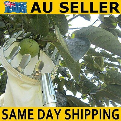 Metal Steel 105mm Fruit Picker Holder Orange Apple Peach Garden Tool AU Dispatch