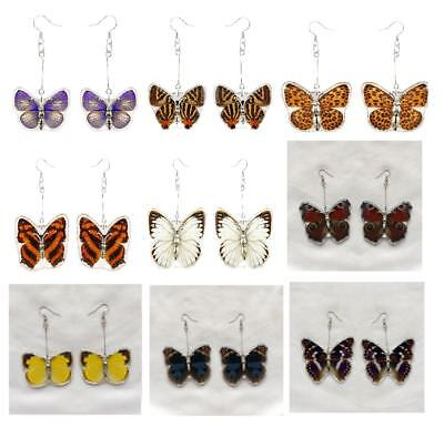 Real Butterfly Dangle Earrings Set of 2 Jewellery Insect Charms