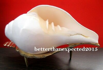 Pooja Sound Shankha Shankh Conch Shell With Brass Stand For Hindu Religious Edh