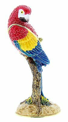 PARROT Exotic Bird TRINKET BOX, Figurine, Gift, Ornament, Collectable, Birds
