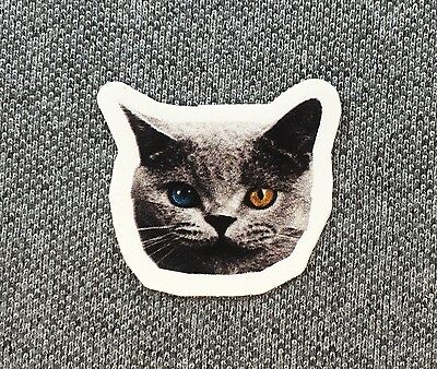 Odd Future Cat Sticker OFWGKTA Small 1.25in si