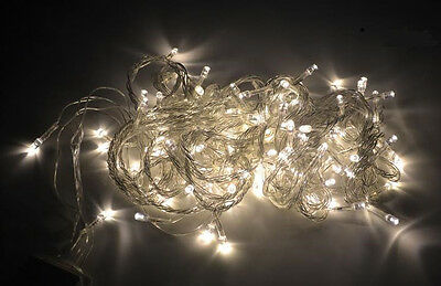 Warm White 10M Wire Control 100LED String party decoration light 110V USA PLUG