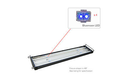 Replacement LEDs for T5 Lighting units • EUR 9,82