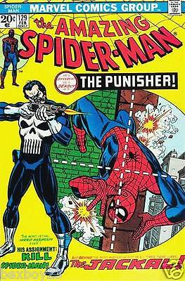 Rare 'The Amazing Spiderman & The Punisher' Marvel Comic Canvas Print