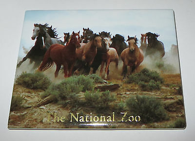 HORSES Magnet Fridge National Zoo Wild Mustangs Realistic New