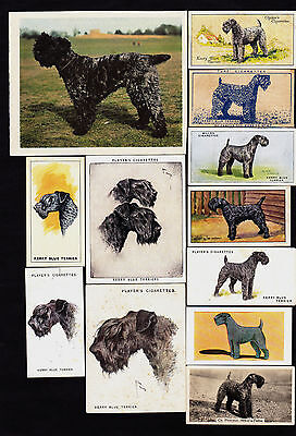 16 Different Vintage KERRY BLUE TERRIER Tobacco/Candy/Tea/Promo Dog Cards