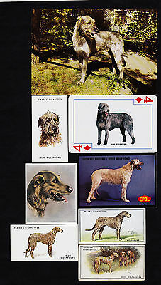 8 Different Vintage IRISH WOLFHOUND Tobacco/Candy/Tea/Promo Dog Cards