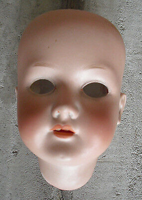 "Vintage Bisque CM Bergmann Waltershausen 191G G 1/2a Girl  Doll Head 5 1/4"" Tall"