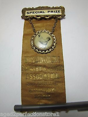 Antique 1912 Poultry & Pigeon Special Prize Ribbon Wissinoming Assn Chicken Pic
