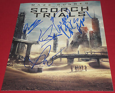 Maze Runner Scorch Trials Signed Poster Photo By 4 Lofland Darden ++ Auto Coa