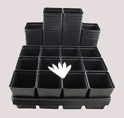 60 - 4.25 Inch Square Pots with 5 Carry Trays and  5 Plant Labels - Growing Kit