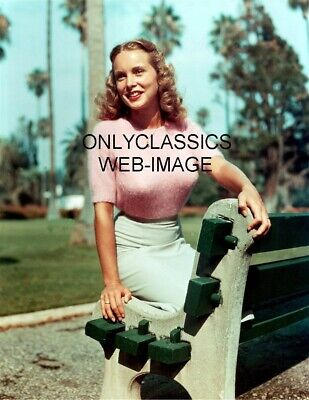 Young Beautiful Janet Leigh Sexy Sweater-Park Bench Photo Print Pinup Cheesecake