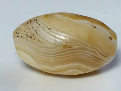 ANCIENT RARE BANDED WESTERN ASIAN AGATE EYE BEAD (28.2mm x 17.3mm)