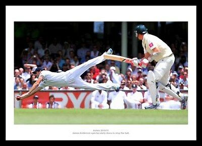 James Anderton England 2011 Ashes Cricket Photo Memorabilia (247)