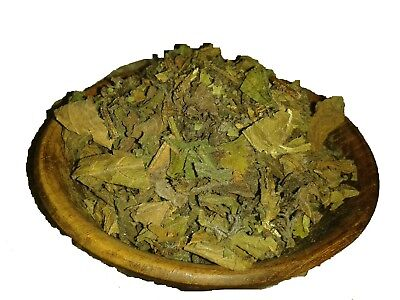 CATNIP FOR CAT KITTEN MOUSE RAT TOY  NEPETA CATARIA X KONG LEATHER PET #catnip
