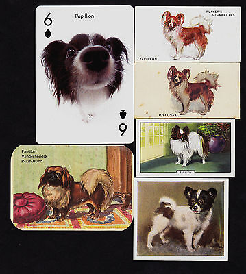 6 Different Vintage PAPILLON Tobacco/Candy/Tea/Promo Dog Cards