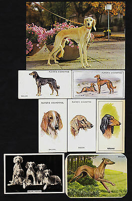 8 Different Vintage SALUKI Tobacco/Candy/Tea/Promo Dog Cards