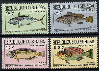 Senegal 1966 SG#323-6 Fishes MNH Set #D1019