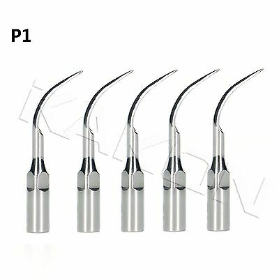5※Dental Ultrasonic Scaler Perio Scaling Tip P1 For EMS/WOODPECKER Handpiece-US