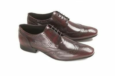 Ikon Ritchie Bordo OXBLOOD Mens Cow oil Lace up Real leather Dress Brogues Shoes