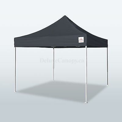 10x10 Light Duty Pop Up Canopy Tent- FAST SHIPPING