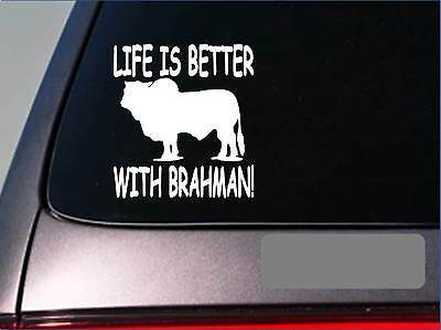 Life is better with brahman *f429* sticker decal cattle black texas beef stock