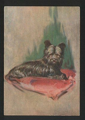 Skye Terrier Tobacco card postcard dogs 1930's #066