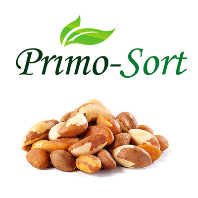 Brazil Nuts Selenium Sources Premium Quality 100G-400G