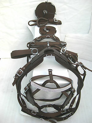 """NYLON DRIVING HARNESS FOR SINGLE HORSE IN BROWN"" with diamonte browband bridle"