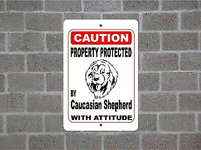 Property protected by Caucasian Shepherd dog breed with attitude metal sign #B