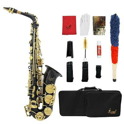 LADE Brass Engraved Eb E-Flat Alto Saxophone Sax with Case + Care Kit OF13