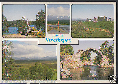 Scotland Postcard - Views Around Strathspey    LC5823