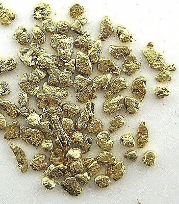Alaskan Yukon BC  Gold Nuggets  18-16  Mesh  1 Gram of Small Fines