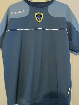 Cardiff City Training Bluebirds Football Shirt Size Large Adult /39407