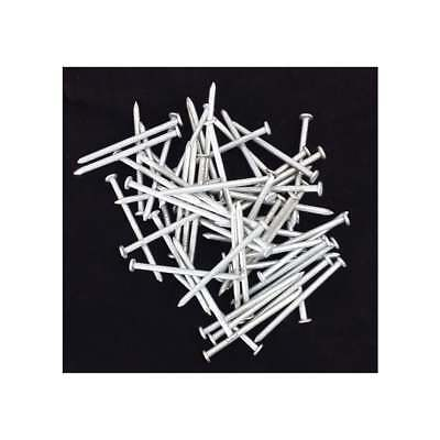 Your Diy Shop 1Kg Pack-Galvanised Round Wire Head Nails