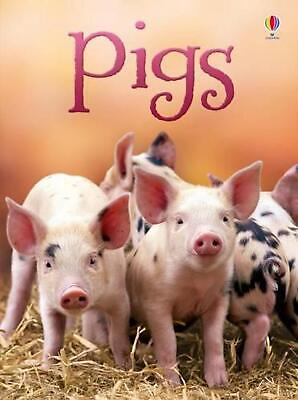Pigs by James Maclaine Hardcover Book Free Shipping!