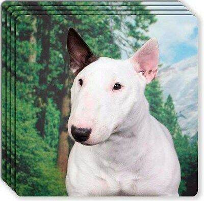 Bull Terrier Rubber Coaster Set