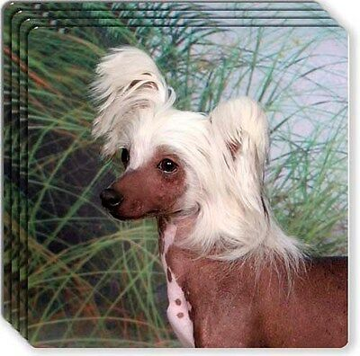 Chinese Crested Rubber Coaster Set