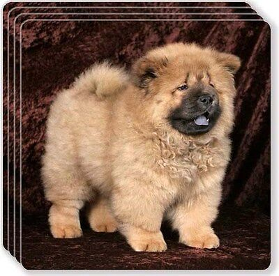 Chow Chow Rubber Coaster Set